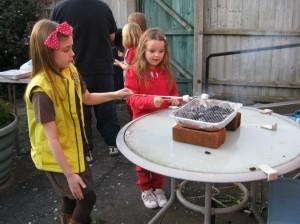 'Smores at  fundraising campfire