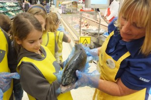 Farm to Fork - a rather heavy salmon!
