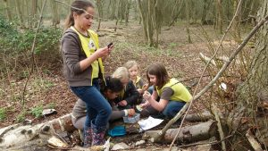 Brownies transformed into pirates - Brownies geocaching